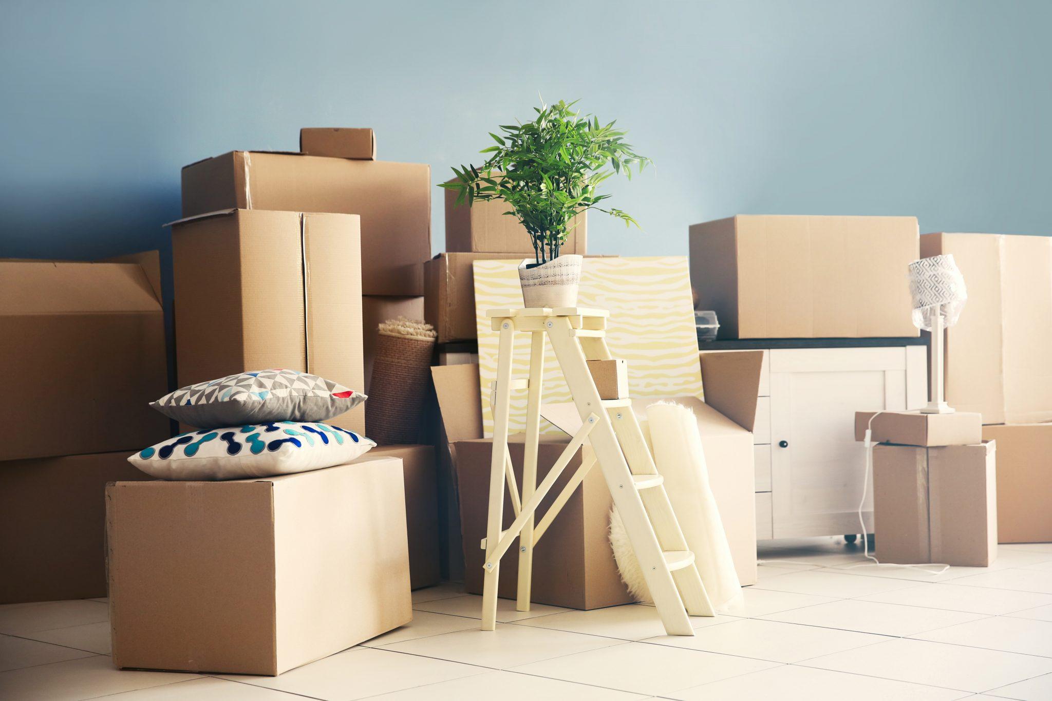 movers in burlington